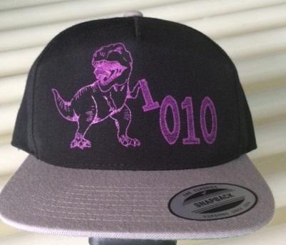 1010 Image