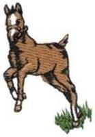 Image Horse & Western