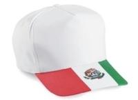Image 5-Panel Mexico Flag