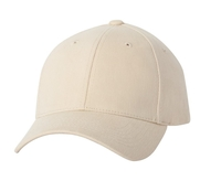 Image Sportsman-Heavy Brushed Structured Cap