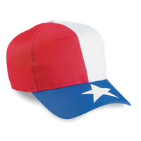 Cobra-Budget Caps 6-Panel Texas Flag