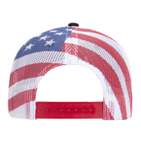 Otto American Flag Mesh Back Cotton Twill 6 Panel Low Profile