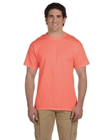 Fruit of the Loom Adult 5 oz HD Cotton TShirt